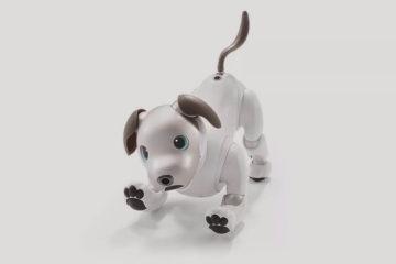 собака робот Sony